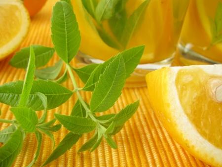 Lemonade with oranges and lemon verbena