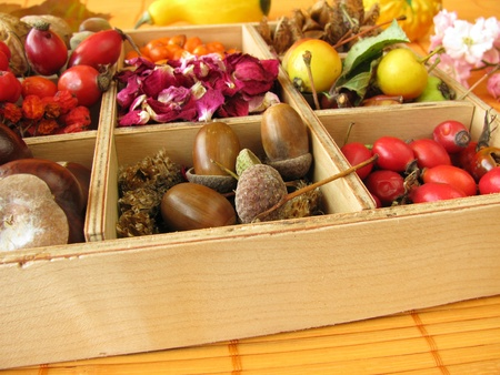 Collecting box with fall fruits and dried rose flowers photo