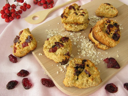 Oat flakes cookies with cranberries photo