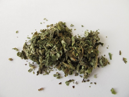 petasites hybridus: Butterbur, Petasitidis folium Stock Photo