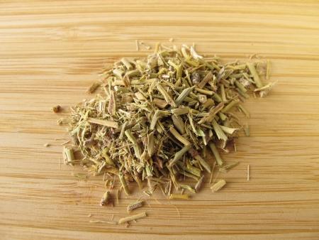 Ephedra, Ephedrae herba Stockfoto