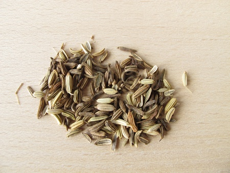 fennel seeds: Fennel seeds, Foeniculi fructus