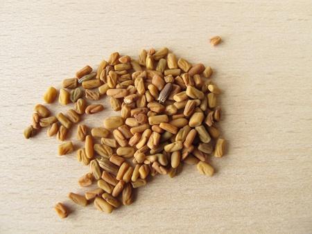 semen: Semi di fieno greco, lo sperma Foenugraeci