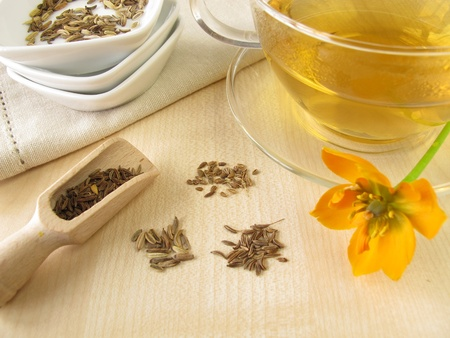 Fennel anise caraway tea Stock Photo - 13423786