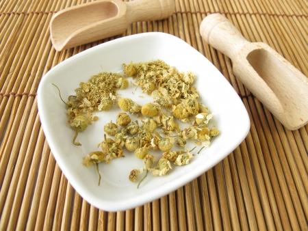 chamomilla: Chamomilla recutitia flowers, Matricariae flos Stock Photo
