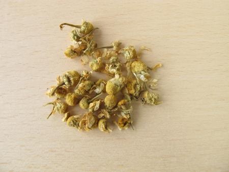 matricaria recutita: Chamomilla fiori recutitia, Flos Matricariae Archivio Fotografico