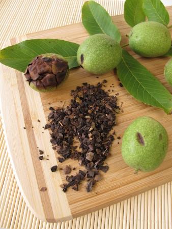 cortex: Green walnut outer shells, Cortex Juglandis Nucum Stock Photo