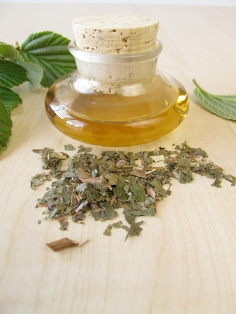 tincture: Tincture with hamamelis Stock Photo