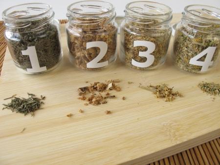 herbal knowledge: Medicinal herbs samples with thyme, gentian root, elder flowers, oxlip flowers