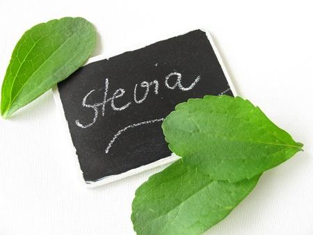 Stevia bladeren en typeplaatje