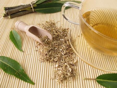 alternative medicine: Tea with willow bark