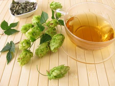 Tee mit Hopfen Standard-Bild - 16810330