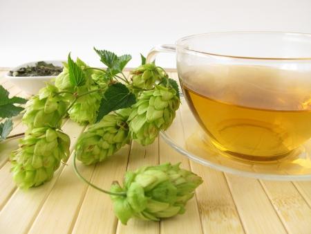 Tea with hops Archivio Fotografico