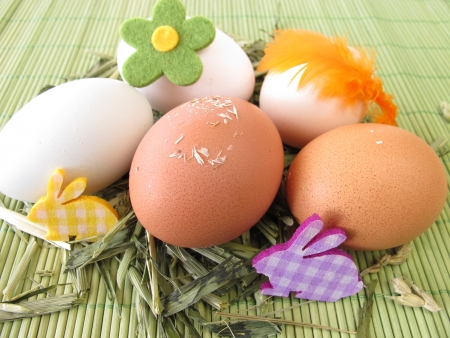 Natural colored eggs in easter nest Stock Photo - 17948810