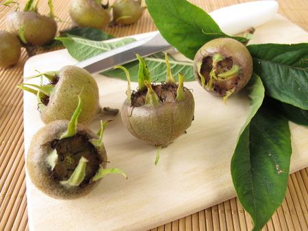 pome: Metlar fruits for fruit jam