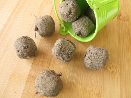Seed balls  Archivio Fotografico