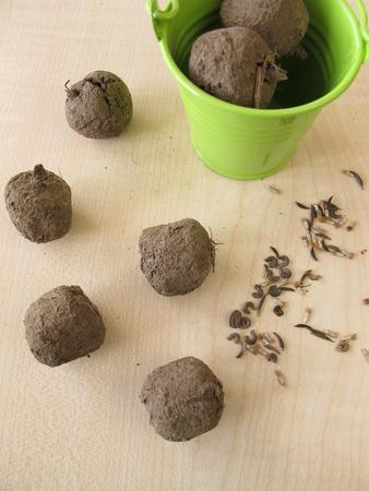 guerilla: Seed balls  Stock Photo
