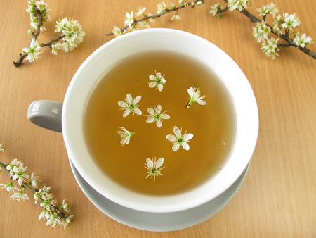 Tea with blackthorn flowers photo