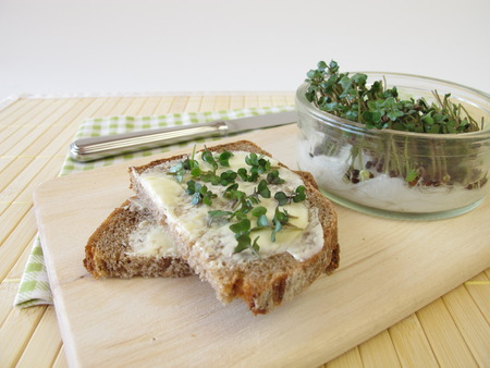broccoli sprouts: Bread with butter and broccoli sprouts