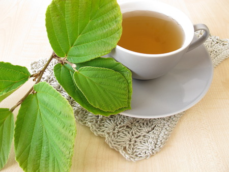 witch hazel: Witch hazel tea