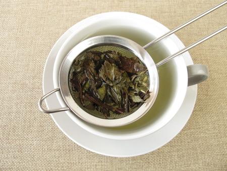 naturopathy: Peppermint tea in tea strainer