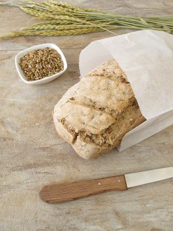 spelt: Homemade green spelt bread in paper bag