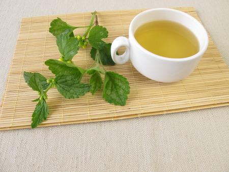 naturopathy: Deadnettle tea