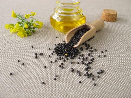 キャノーラ油と菜種 写真素材