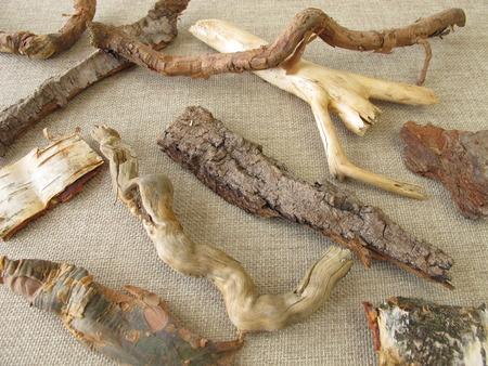 crafting: Las ra�ces del �rbol y la corteza para hacer a mano