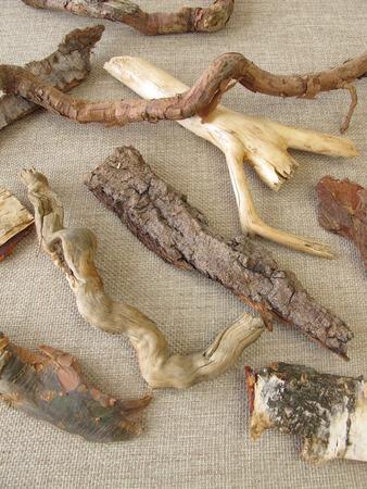 boom wortels: Boomwortels en schors voor crafting Stockfoto