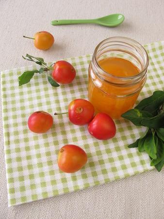 myrobalan: Homemade jam from cherry plums Stock Photo