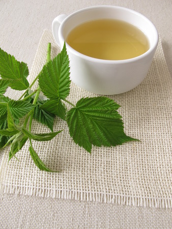 Raspberry leaf tea Stock Photo - 43297106