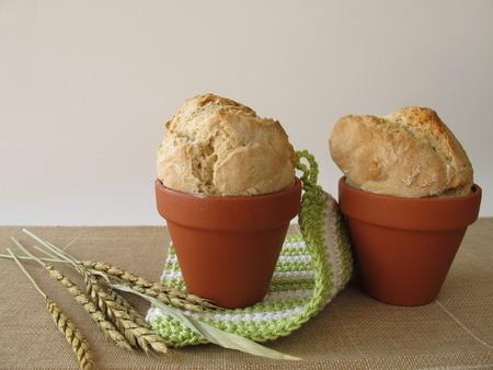 flowerpot: Bread in  terracotta flowerpot