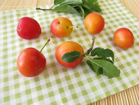 myrobalan: Red cherry plums