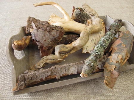 craft material: Craft material with tree roots, bark and twigs