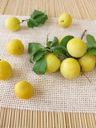 myrobalan: Yellow cherry plums Stock Photo