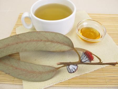 naturopathy: Eucalyptus tea with honey Stock Photo