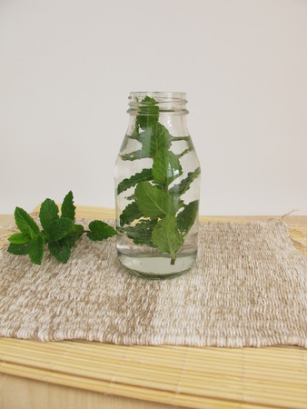springwater: Herbal water with mint leaves