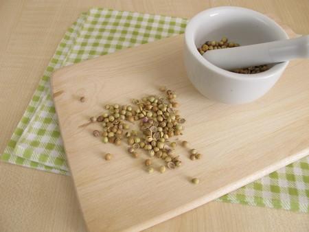 culantro: semillas de cilantro y mortal