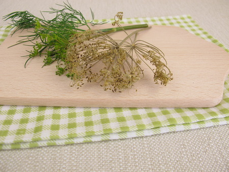 dill leaves: Fresh and dried dill leaves Stock Photo