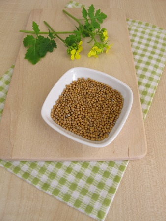 mustard leaf: Mustard herbs with flowers and mustard seeds