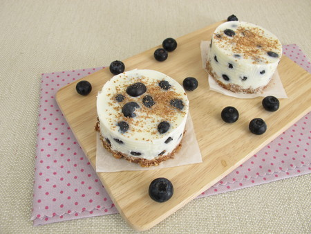 without: Small blueberry yogurt tortes without baking with cookie crumbs crust, yogurt and chocolate sprinkles