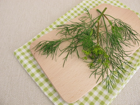 dill leaves: Fresh dill leaves Stock Photo