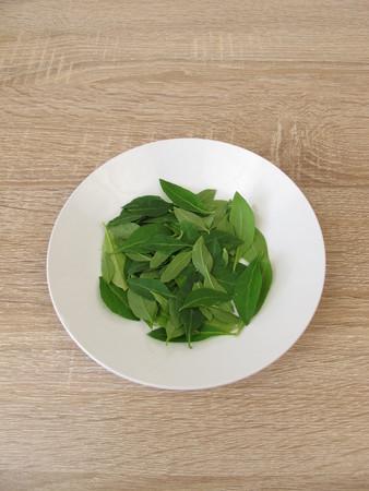 Fresh goji leaves on the plate
