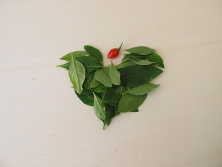 Fresh goji leaves on a wooden board