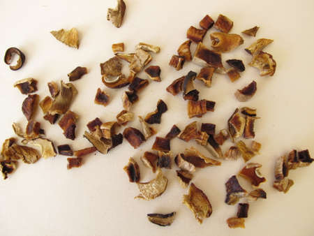 Dried mushrooms, bay bolete and porcino Archivio Fotografico