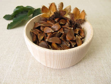 Beechnuts from the European beech in a wooden bowl Archivio Fotografico