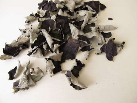 Fermented and dried blackberry leaves for caffeine free black tea on a wooden board Archivio Fotografico