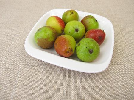 Apple fruits from the sorb tree, Sorbus domestica Archivio Fotografico