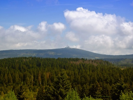Der Nationalpark Harz